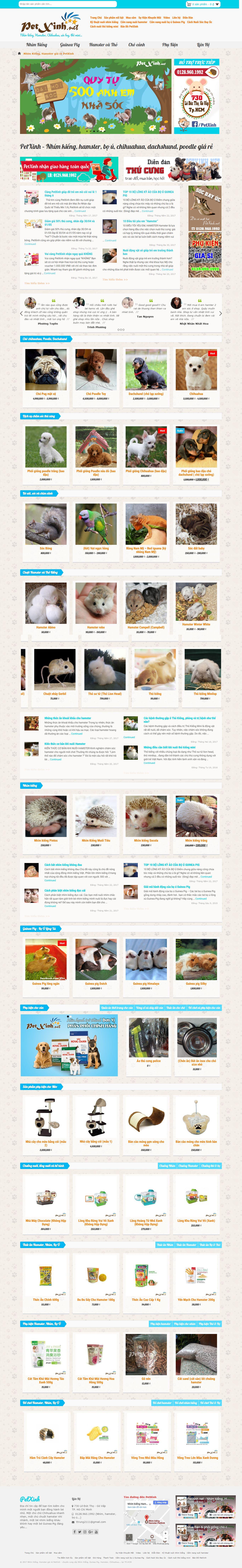 Thiết kế website pet xinh đẹp, chuyên nghiệp chuẩn SEO